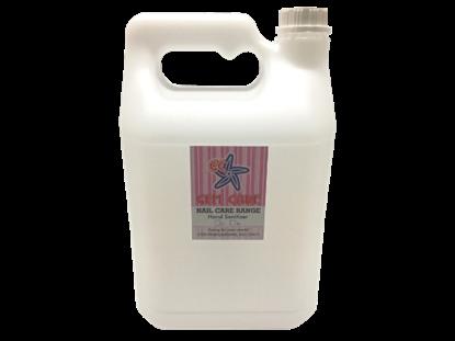 Antibacterial Sanitizer 5l
